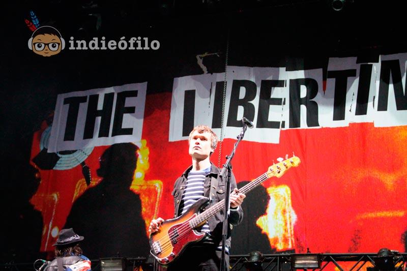 The Libertines - Best Kept Secret Festival 2015 (3)