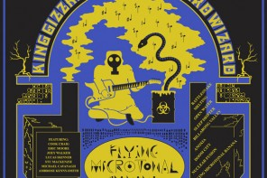 King Gizzard and The Lizard Wizard – Flying Microtonal Banana (2017)