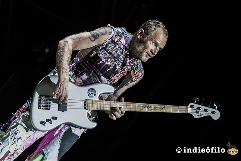 Flea - Red Hot Chili Peppers - FIB 2017