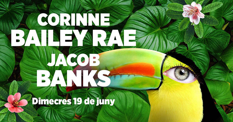 Corinne Bailey Rae and Jacob Banks, last-minute additions to Festival Jardins de Pedralbes 2019